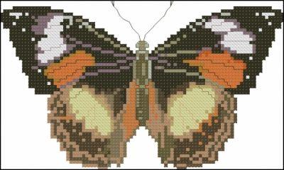 Описание: Схема для вышивки крестом - Бабочка в формате xsd.  Разместил(а) .
